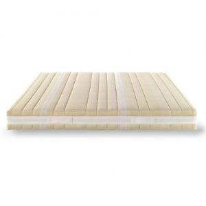 bamboo-e1551152622182 (1)