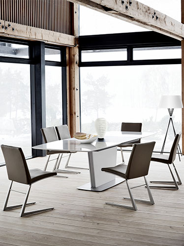 Mariposa modern dining chairs